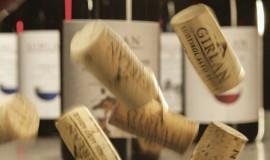 San Martino, si lascia l'acqua e si beve il vino!